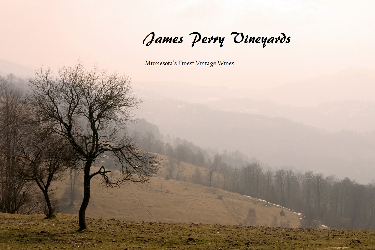 James Perry Vineyards